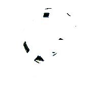 cleerline-white-tr-logo