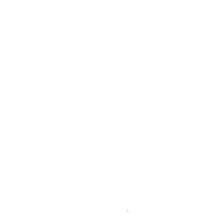 schill-2020-white-tr-logo